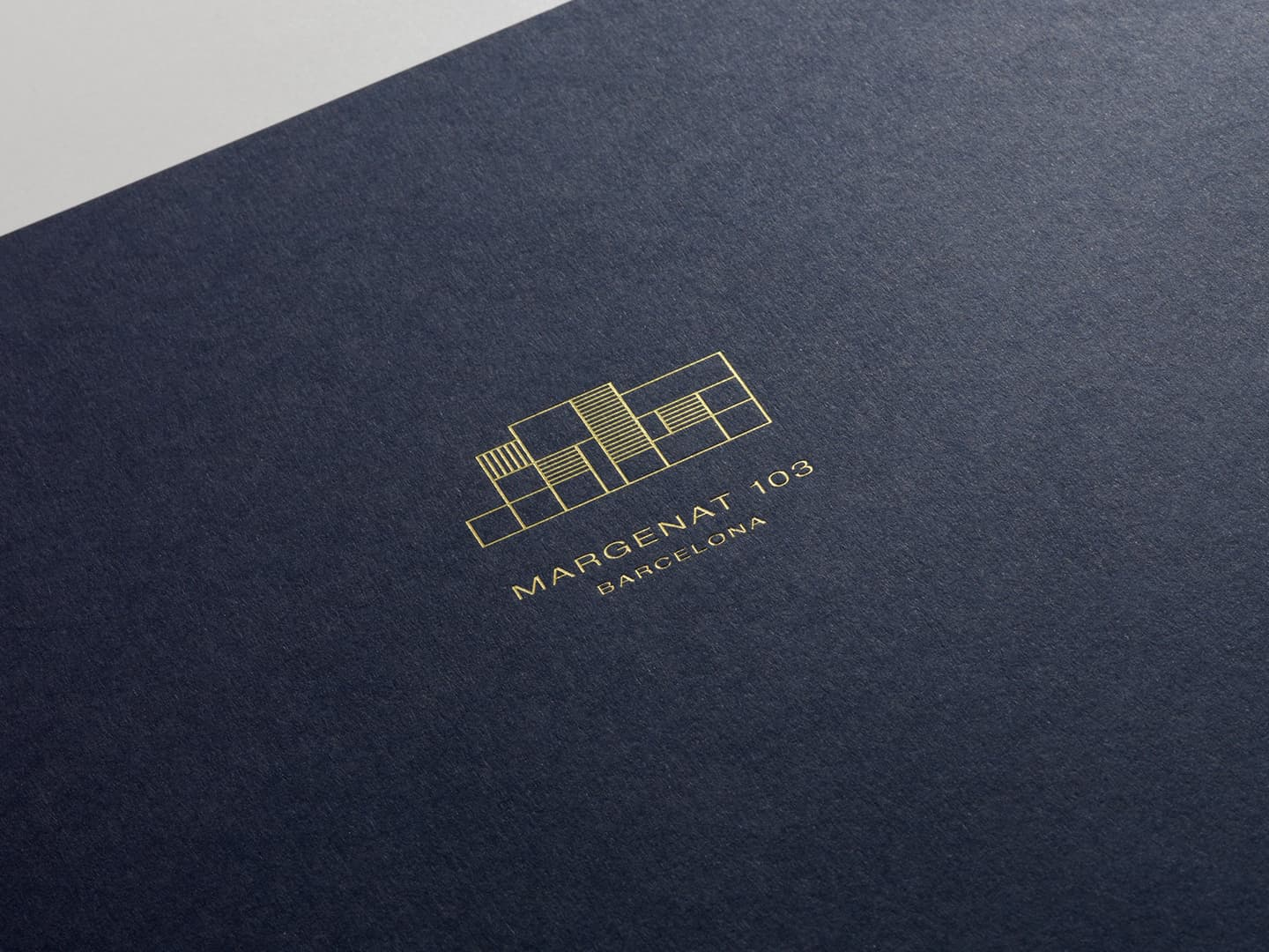 Detail of the cover of the Margenat book