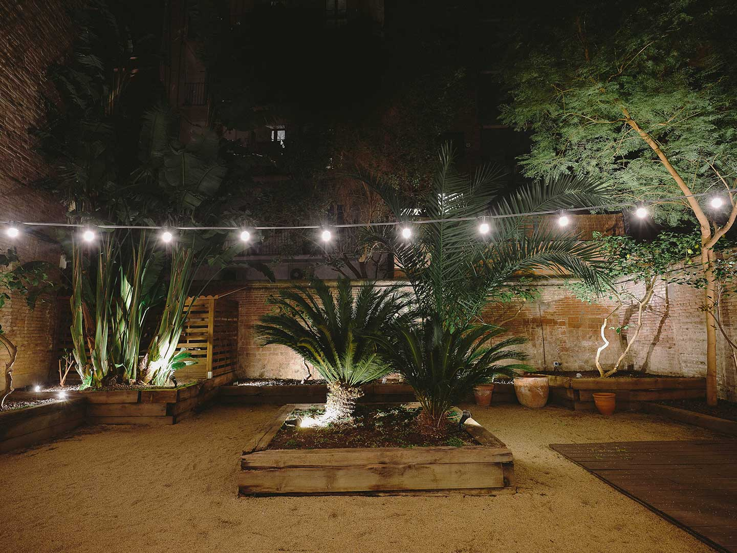 Interior garden at night, Mil hojas